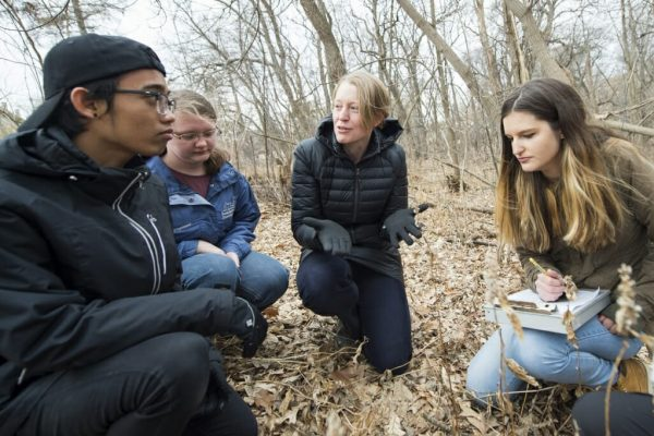 people sitting in woods
